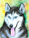 watercolor anumal portrait